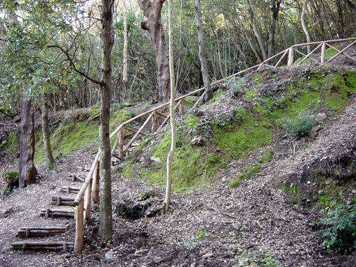 Die Naturparks Montioni und Poggio Neri